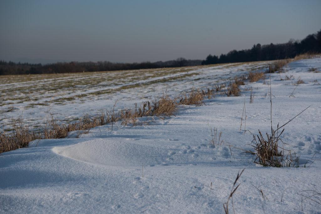 Baden-Württemberg, Deutschland, Engen, Europa, Germany, Hegau, _THEMES, jahreszeiten, natur, nature, schnee, schneeverwehung, season, snow, snow drift, winter